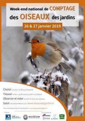 Comptage Hivernal Des Oiseaux