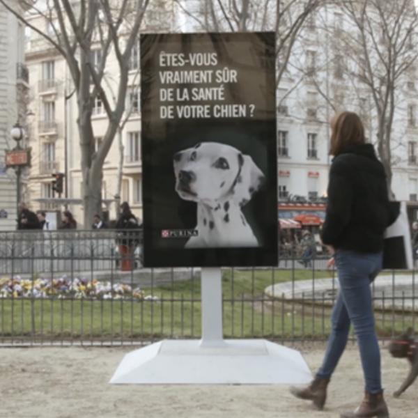 Faites Uriner Votre Chien Sur Ce Poteau Soigner Son Animal Blog Animal
