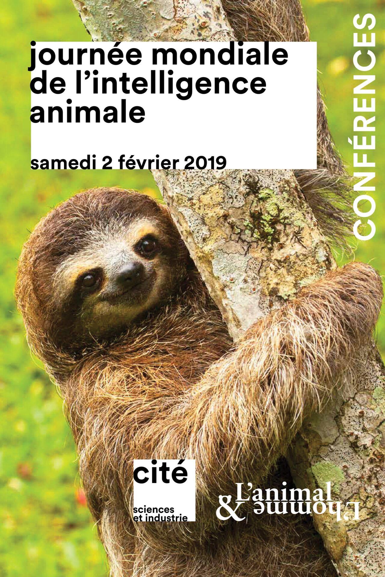 Journee Mondiale De Lintelligence Animale